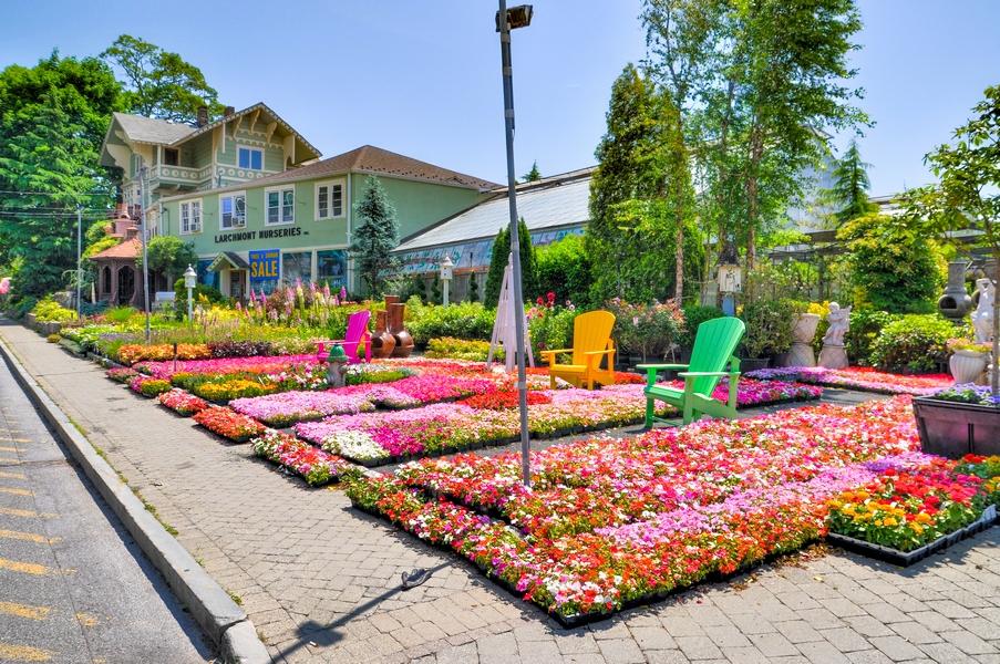 LARCHMONT NURSERIES Inc. A Complete Garden Center ...